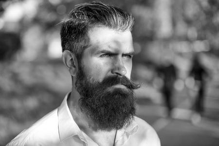 Elegant Man in Suit. Bearded man outdoor