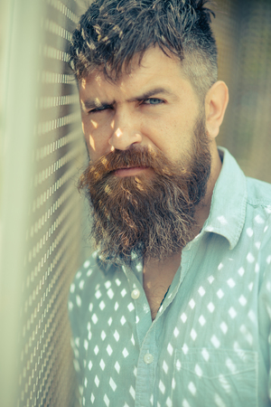 Bearded man in blue shirt standing by window with shutters. Dotted pattern made by sun rays. Man with brutal face and stylish beard hiding in shade, hot summer concept. Bearded hipster in shady room.
