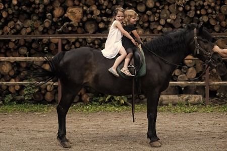 Girls ride on horse on summer day Banco de Imagens
