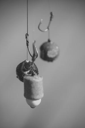 Hooks with fishing bait, chumming. Fishing, angling, catching fish, chum. Fishhooks on line on blurred background. Stock Photo