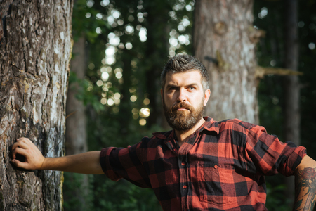 Brutal lumberjack leaning on tree. Bearded man with roses tattoo on arm wandering in forest. Hiking in summer woods, nature concept.