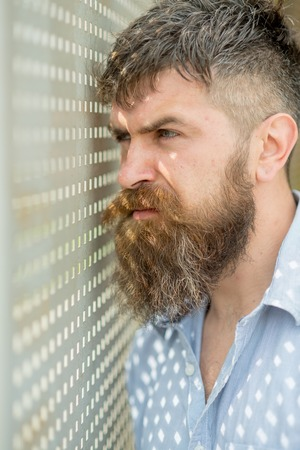 Bearded man looking through holes in shutters. Mature detective with long beard standing by window and watching street, mystery concept. Man with brutal face and trendy beard hiding in house.