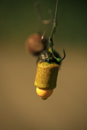 Hooks with fishing bait, chumming Stock Photo