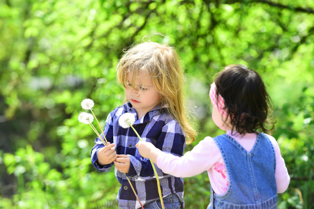 Girl give dandelion flower for boy in spring or summer park. Children on idyllic sunny day outdoor. Childhood, family, love concept.