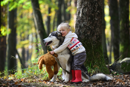 Niña abrazando a un perro husky en el parque otoño Foto de archivo