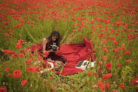 Journalism and writing, summer. Poppy, Remembrance or Anzac Day Reklamní fotografie - 102657620