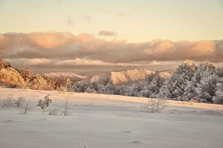 winter landscape. Beautiful winter landscape Stock Photo