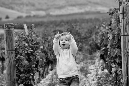 boy in the vineyard. Cute baby boy child Imagens