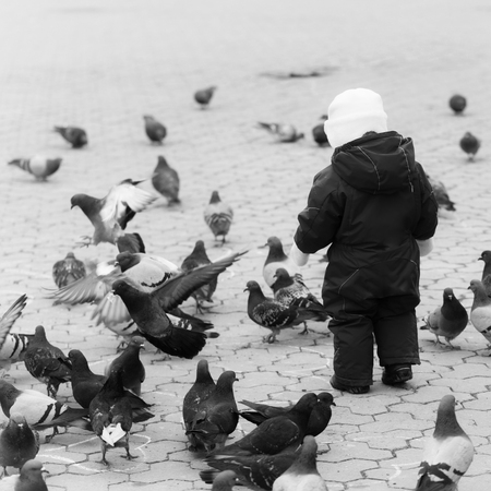 child feeds the pigeons. Child walking in red warm overall with pigeons