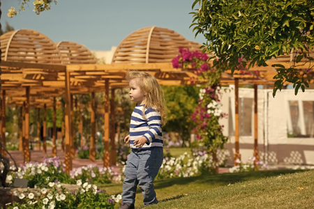 child in a flower garden. Baby boy walking on garden yard with blossoming flowers