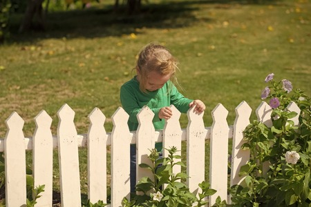 child is entertained in the clearing. Child small cute boy standing near white fence Zdjęcie Seryjne - 103333609