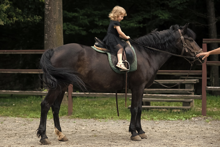 Equine therapy, recreation concept. Girl ride on horse on summer day
