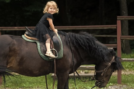 Equine therapy, recreation concept. Child sit in rider saddle on animal back