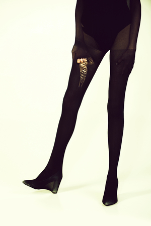 Beauty fashion portrait. legs of woman in torn black nylon tights