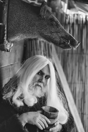 world of magic and magic. Druid and stuffed boar head