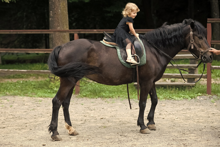 brave little girl riding a horse. Girl ride on horse on summer day Banco de Imagens