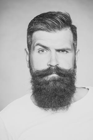 Beauty Fashion model man. Fashion look. Portrait closeup of one handsome sensual grey-haired unshaven man with long beard moustache and eyebrow raised model looking forward