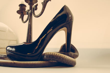 This shoe is in trouble. Snake guard fashion shoe at candelabra. Snake wrapped around high heel shoe and candlestick. Leather footwear and serpent animal. Fashion and style. Still life design Stockfoto