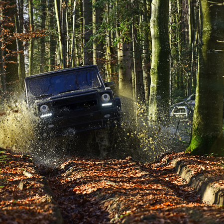 Car racing in autumn forest. SUV or offroad car on path covered with leaves crossing puddle with water splash. Offroad race on fall nature background Extreme, challenge and 4x4 vehicle concept