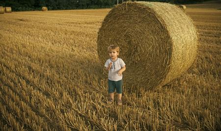 happy childhood. Adorable little kid boy having fun with hay bales