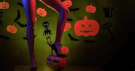 Holiday halloween with funny carnival costumes on a halloween background. 31 october. Sexy woman on Halloween background. Background decorated for Halloween. Stock Photo