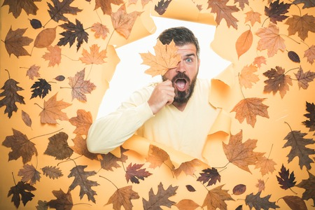 Autumn celebrate. Portrait of autumn man. Branding mockup. Advertising agency. Autumn leaves background. Rain and umbrella november concept. Colorful autumn and dry leaf.
