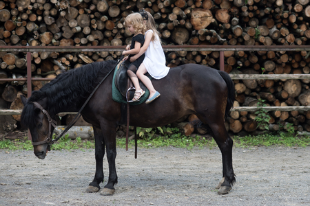 Children sit in rider saddle on animal back. Girls ride on horse on summer day. Friend, companion, friendship. Sport, activity, entertainment. Equine therapy, recreation concept. riding school