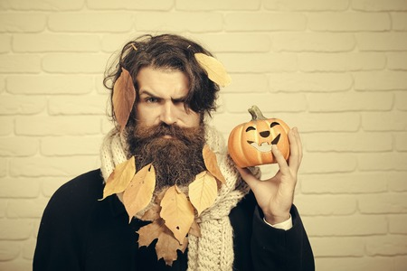 Halloween man holding pumpkin in hand on brick wall. Hipster with yellow leaves in beard hair. Holiday celebration concept. Autumn and harvest season. Trick or treat.