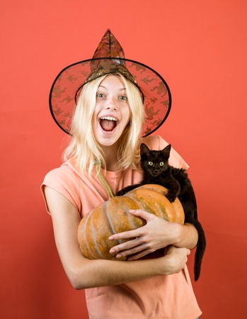 Woman witch with Pumpkin and black cat. Fashion Glamour Halloween art design. sexy Halloween costume. Halloween Party girls. Zdjęcie Seryjne
