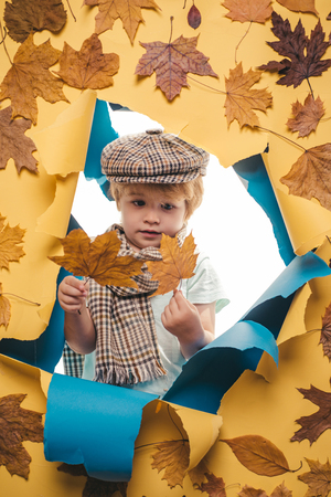 The autumn mood and the weather are warm and sunny and rain is possible. Happy children. Cute little boy are preparing for autumn sunny day.