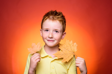 Red-haired kid boy playing with leaves and looking at camera. Family childhood lifestyle concept. Autumn time for Fashion sale. Close-up portrait.