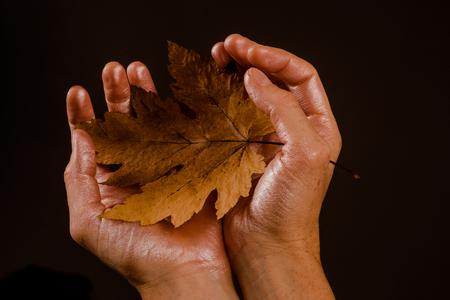 Autumn leaf on hands on black background. Autumn leaves background. Autumn copy space and leaf fall design. Hello September.