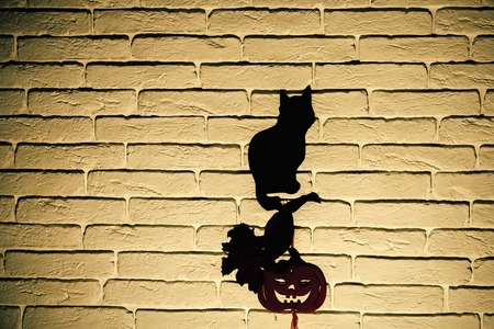 Halloween totem symbols. Holiday celebration concept. Black cat and orange pumpkin with tree leaves silhouettes paper cutouts on beige brick wall. Mystery and superstition, copy space