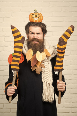 Halloween hipster with pumpkins and yellow leaves in beard hair. Frown man holding striped stockings on sticks on brick wall. Trick or treat. Holiday celebration concept. Autumn and harvest season. Stock Photo