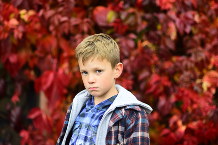 Sad and unhappy. Sad boy is blue in autumn. Small boy with sad look. Small child feel sad. Some days are just sad days, thats all Фото со стока - 109521382