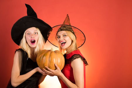 Two happy young women in black and red dresses, costumes witches halloween on party over orange background. Festive halloween design. Frightened friends with dog at a Halloween party.
