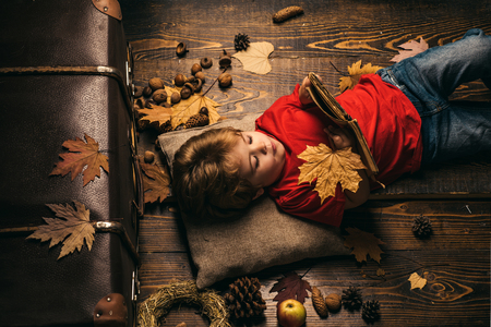 Little cute boy lies on a wooden floor with autumn leaves and read book. Little child boy lies on a warm blanket dreams of warm autumn. Kid playing in autumn. Banco de Imagens