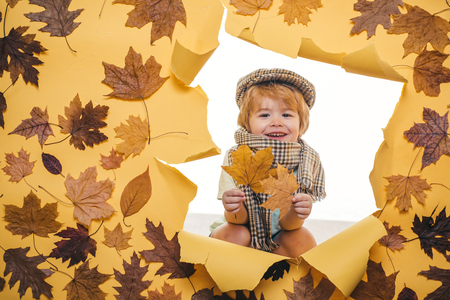 Smiling little boy playing with leaves and looking at camera. Sale for entire autumn collection, incredible discounts. Fashion portrait of beautiful sensual little cute boy in hat and scarf. Stock Photo