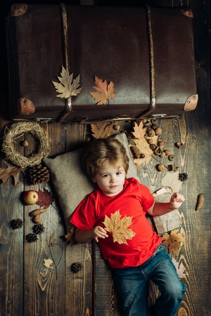 Smiling little boy playing with leaves and looking at camera. The biggest discounts for all autumn clothes for children. Autumn mood and the weather are warm and sunny and rain is possible.