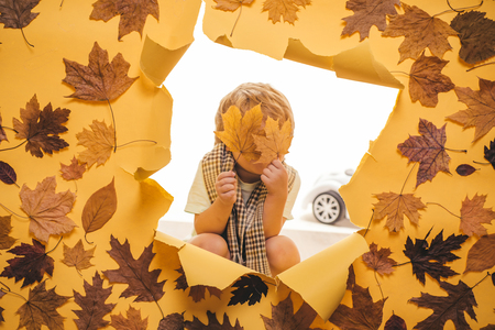 Boy in seasonal clothes with golden leaf. Cute little boy in autumn playing with leaves on autumn leaves background. Cute little boy are preparing for autumn sunny day. Stock Photo