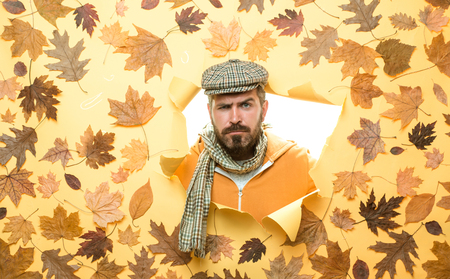 Bearded man lies on an orange background. Discounts for all autumn clothes. Funny expression. Autumn boy preparing for Autumn sale. Handsome funny male with background board for Copyspace.