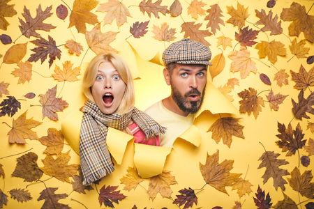 Surprised couple on autumn clothes discounts, man with beard and an attractive girl in yellow background. Autumn couple wearing in autumn clothes. Autumn mood and the weather are warm and sunny.