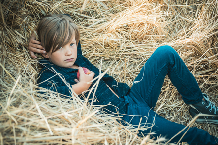 Kid boy holding gold leaf and lies on the hay. Fair-haired boy lies on hay background and eats an apple. Bye summer - hi autumn. Kid on an autumn holiday in the farm. Banco de Imagens