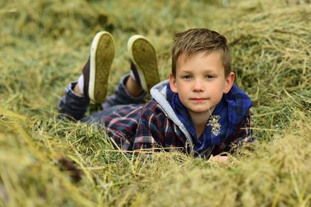 My own pleasure. Little boy relax on wheat field. Little boy on farm field. Cultivating and growing wheat. Enjoying simple things Imagens