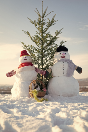 Snowman couple with green fir tree.
