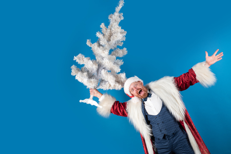 Surprised santa with christmas tree. Santa claus with Christmas suit. Christmas, New Year celebration. Isolated for background.