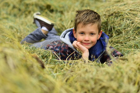 Small dreamer. Small boy relax in haystack. Small boy daydreaming in haystack hill. Looking for a needle in a haystack