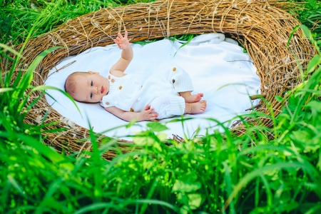 Newborn baby in wicker crib. Infertility treatment impacts on newborn baby health. Ecology and health. Health is a blessing. Demography and human ecology. Infertility problem
