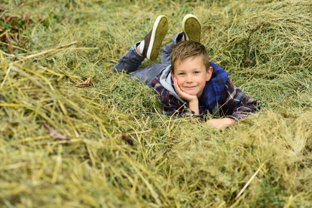 Happy and carefree. Happy boy. Little boy happy smiling. Little boy enjoy relaxing on hay. Its where Im most happy 写真素材