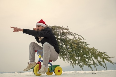 Hipster carrying xmas tree on white snow